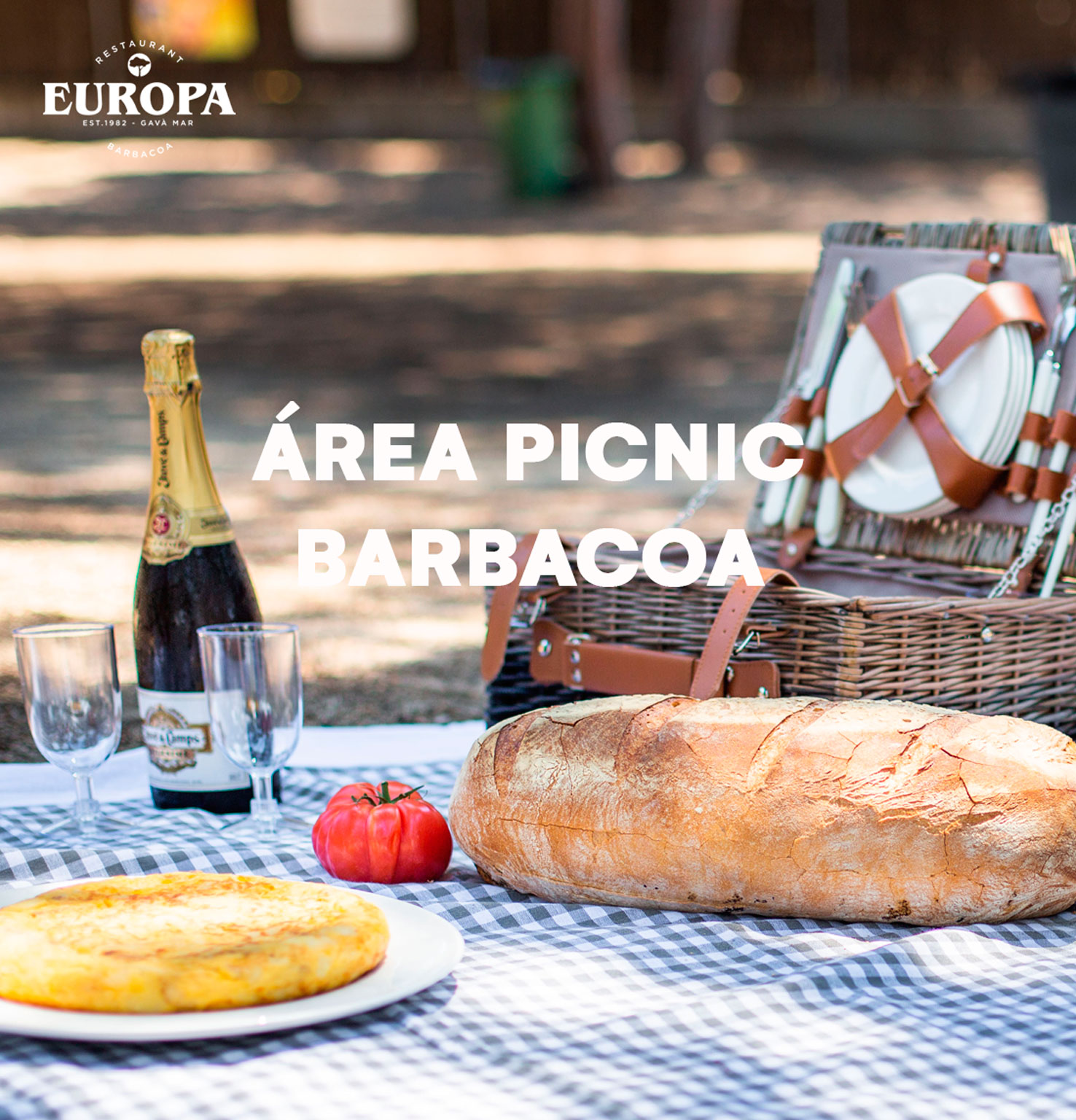 home_picnic_3